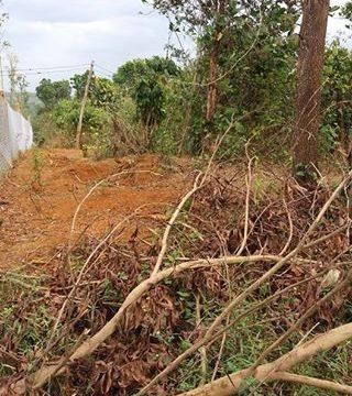 Đất nông nghiệp giá rẻ – mua dat Dak Nong