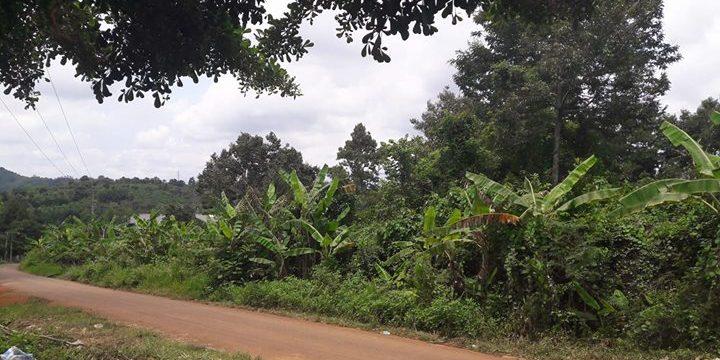 Đất thổ cư thôn Nam Rạ – bán đất Đắk Nông