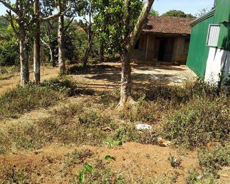 Đất thổ cư gần điện lực Gia Nghĩa – bất động sản Đắk Nông