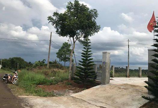 Chính chủ cần bán gấp đất vành đai Quảng Thành